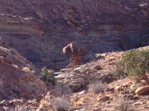 Syncline Loop Trail:  Mushroom Rock