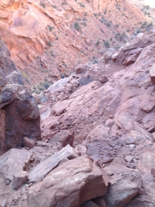 Syncline Loop Trail:  View of the Way Out of the Canyon